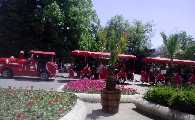 atracción turística servicio de venta de producción divertido composición vagón de tren locomotora movimiento lento de gasolina eléctrico de metano  parques diesel zashtitet