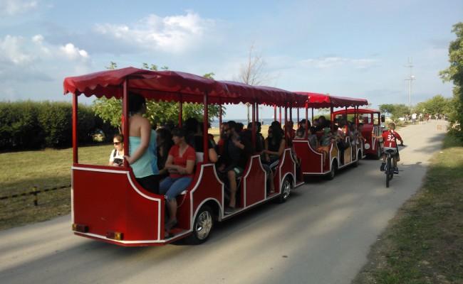proizvodnjo in prodajo storitev turistična atrakcija zabavno vlak lokomotiva sestava vagon počasi premika električni bencin diesel plin metan Park zashtitetni mesttnosti