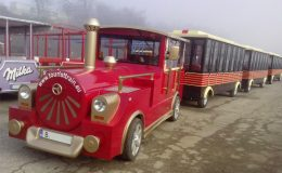 tourist-attraction-train-ride-with-three-wagons